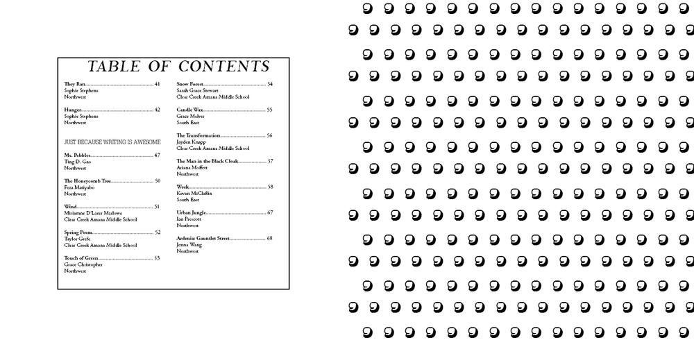 Sample from the Table of Contents.