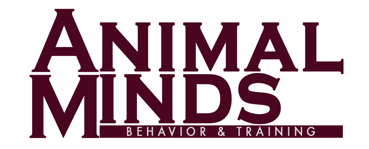 Sacramento Dog Training - Animal Minds Behavior & Training