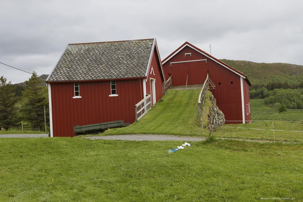 Norway 14.jpg