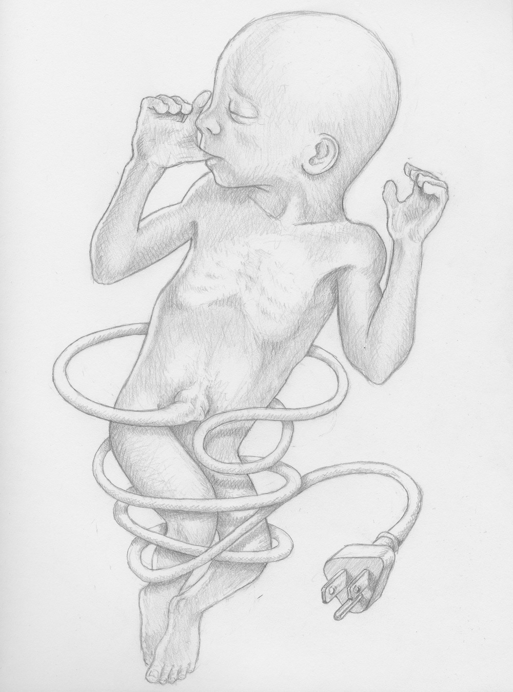 Umbilical    2011  Graphite on Paper  9x12