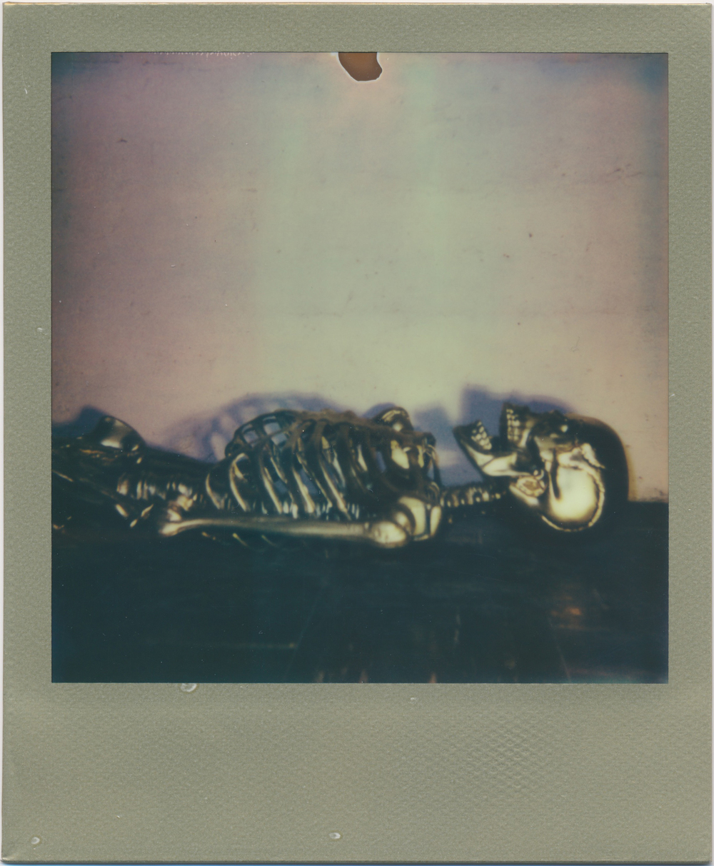 Guilded   2014  Impossible Project 600 Color Shade Gold Edition