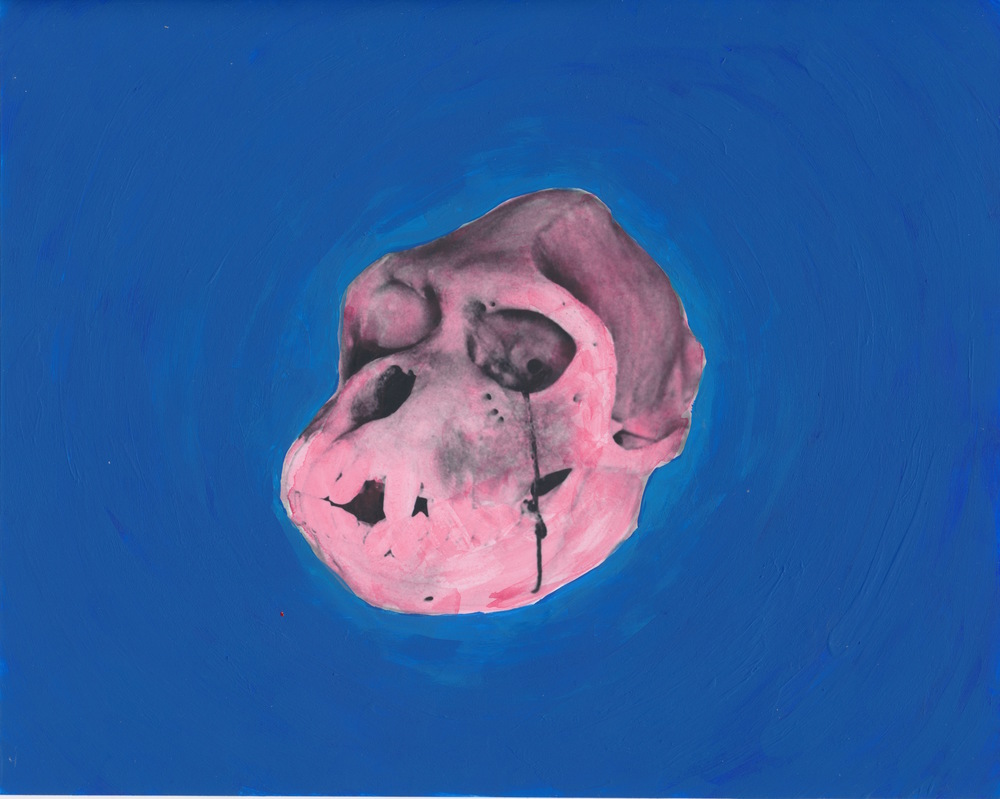 Cercopithecus Pygerythrus    2015  Acrylic on gelatin silver print  8x10