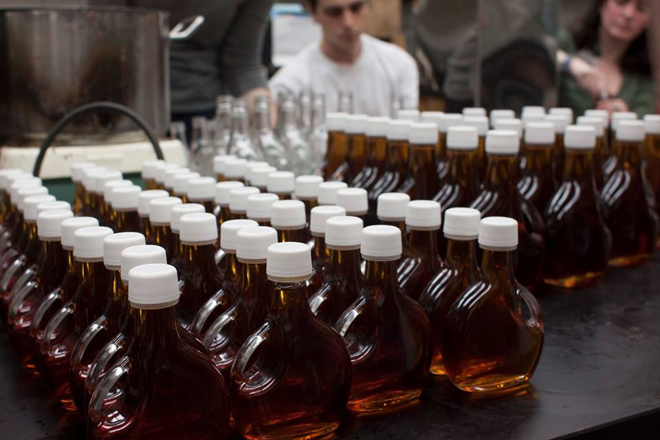 Beautiful bottles of Amber Rich syrup!