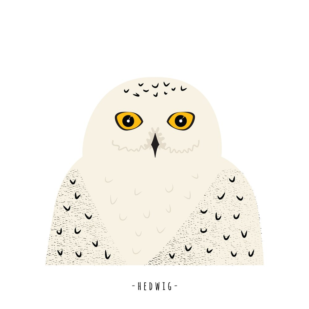 Hedwig the owl from Sara Stuart via Sarasure. Custom Harry Potter animal illustration for a baby nursery.