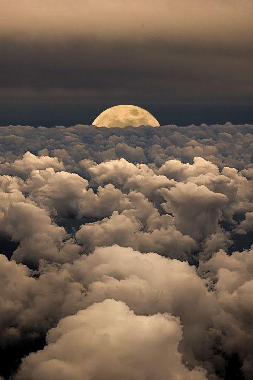 spirit-warrior-moon-float-jenni-cornette.jpg