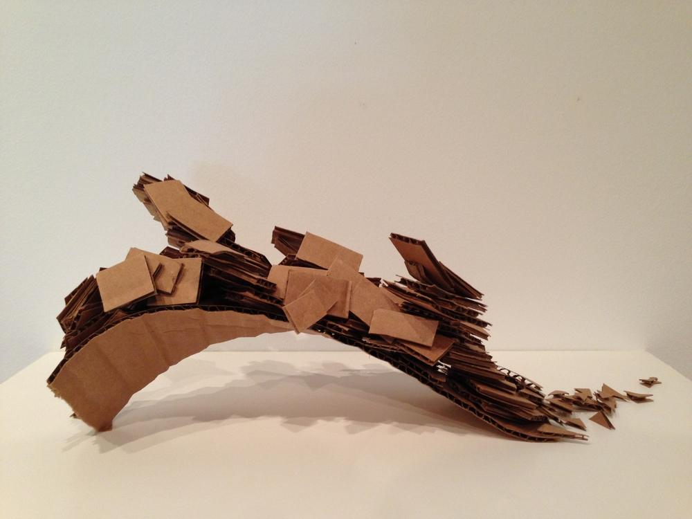 Cardboard Concept 1.jpg