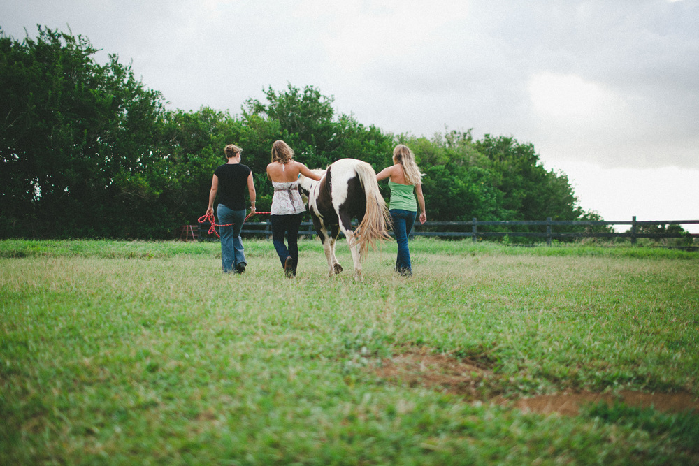 tarah-horse-cadencia-photography-5134.jpg