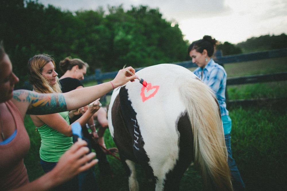 tarah-horse-cadencia-photography-5205.jpg