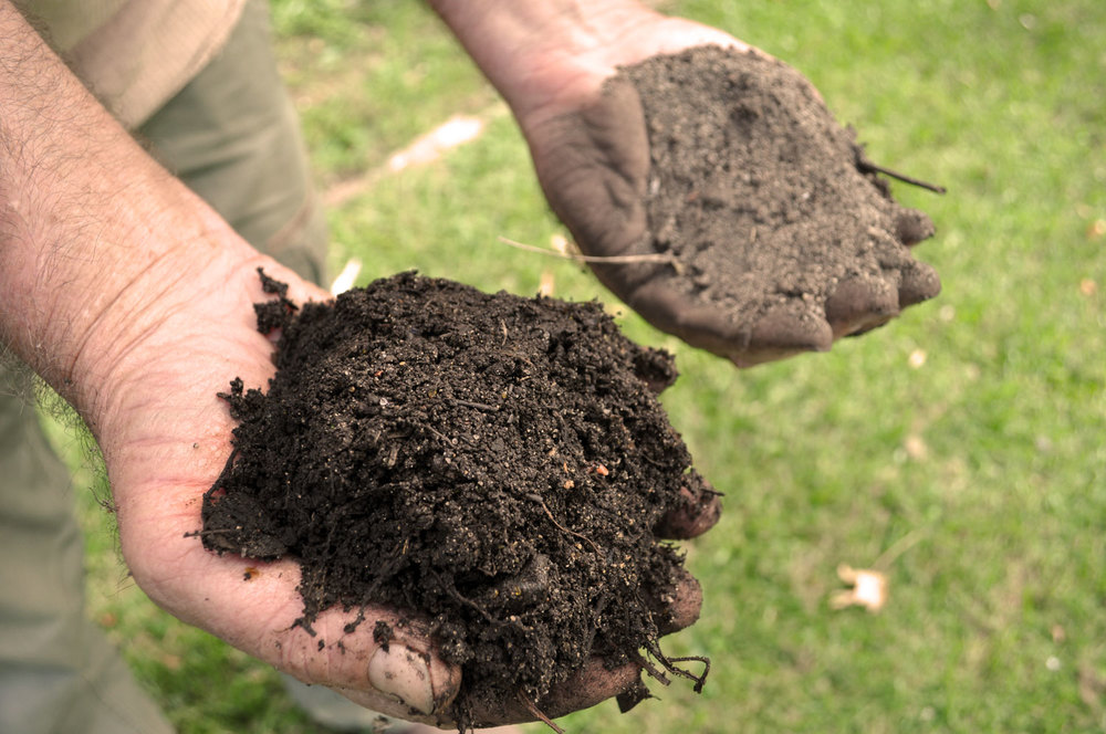 What is soil compost key for Is soil living