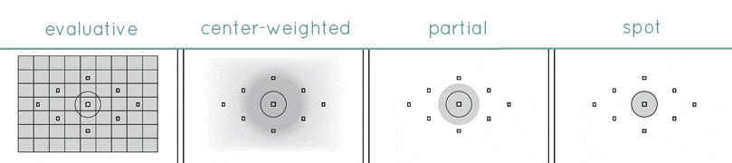 Metering Modes Explained - www.mommatography.com