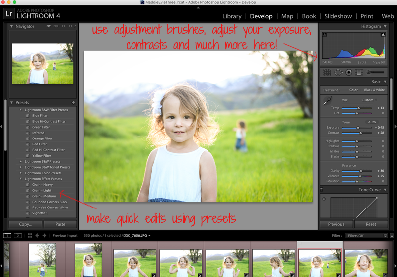 Learn Lightroom the Easy Way - Quick Lightroom Introduction - www.mommatography.com