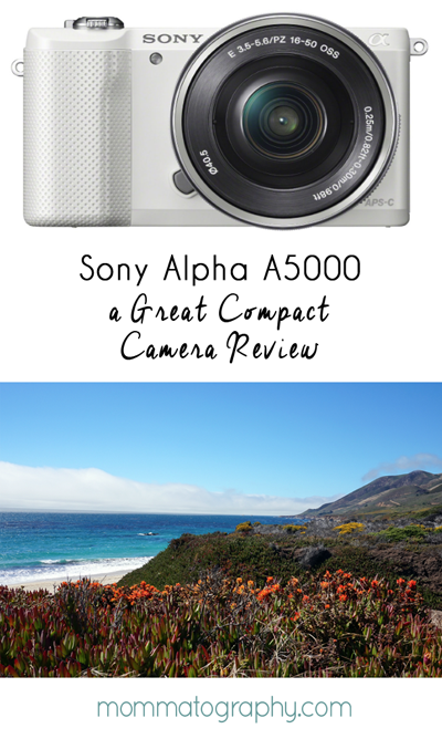 Great Travel Camera - Compact Camera for On The Go