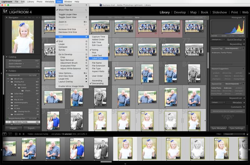 How to Sort & Organize Your Favorite Photos in Lightroom - www.mommatography.com