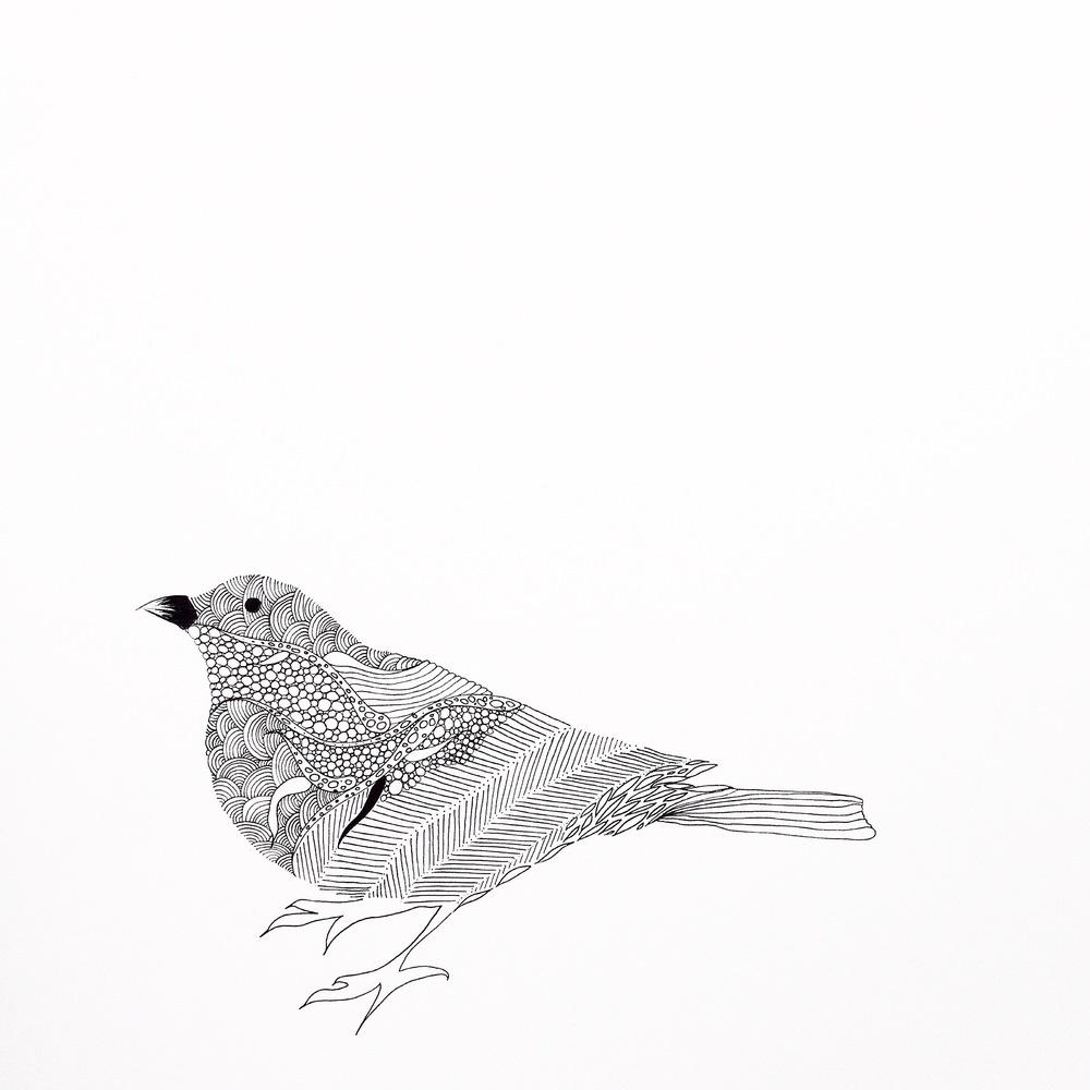 026 (5).JPG