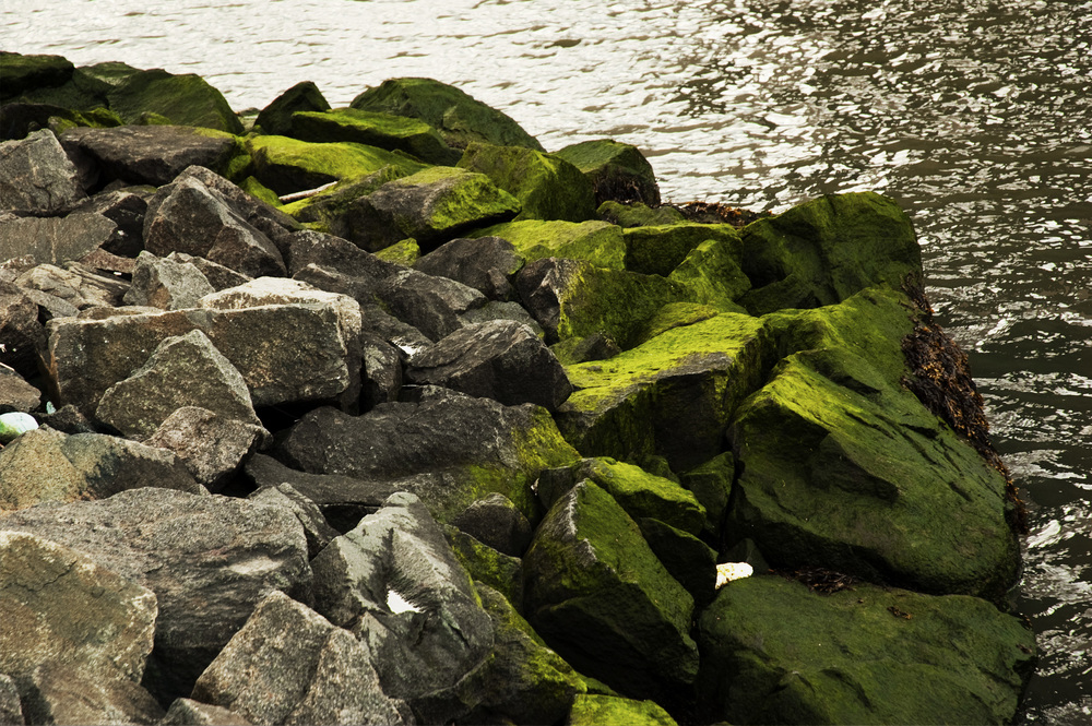 9.GREEN_rocks_edit_2.jpg