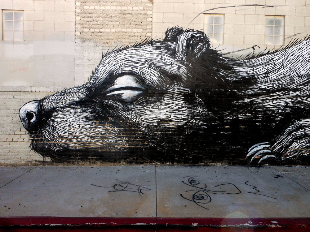 Hibernation – detail from ROA's peice by Doran is licensed under CC BY 2.0