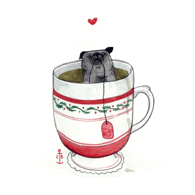 Black Pug in Yerba Matte Green tea! by Chelsey Barnes is licensed under CC BY 2.0