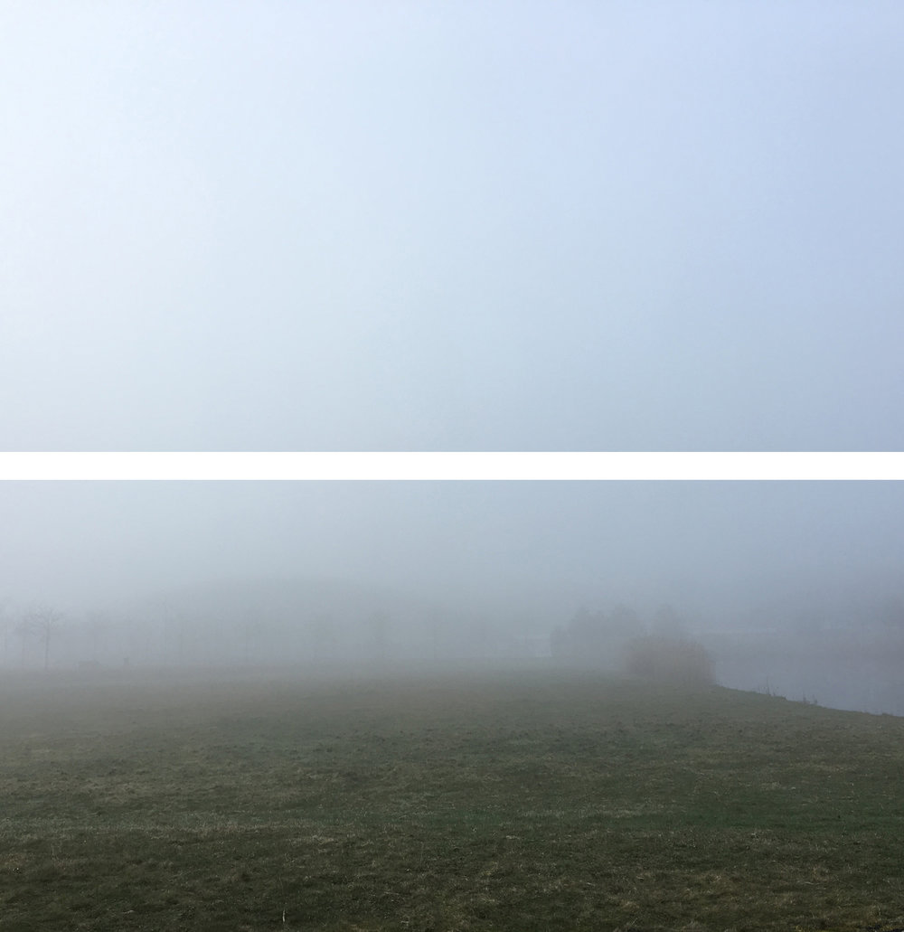fog web.jpg