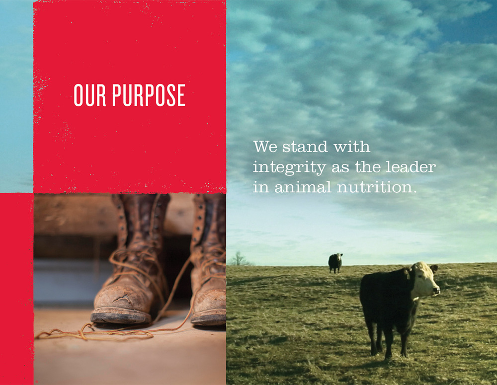 Purina_Brand_Book_11.jpg