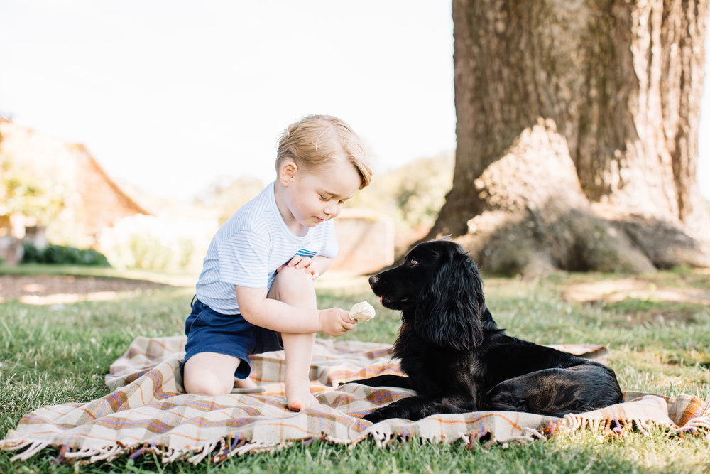 Prince George Birthday Shoot