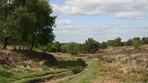 Little Haywood, Staffordshire