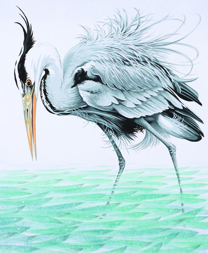Heron_V2(L).jpg