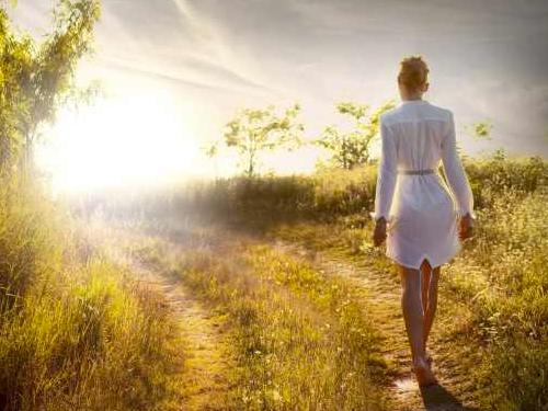 MOVING MEDITATIONS - WILDERNESS WALKS & QI GONG