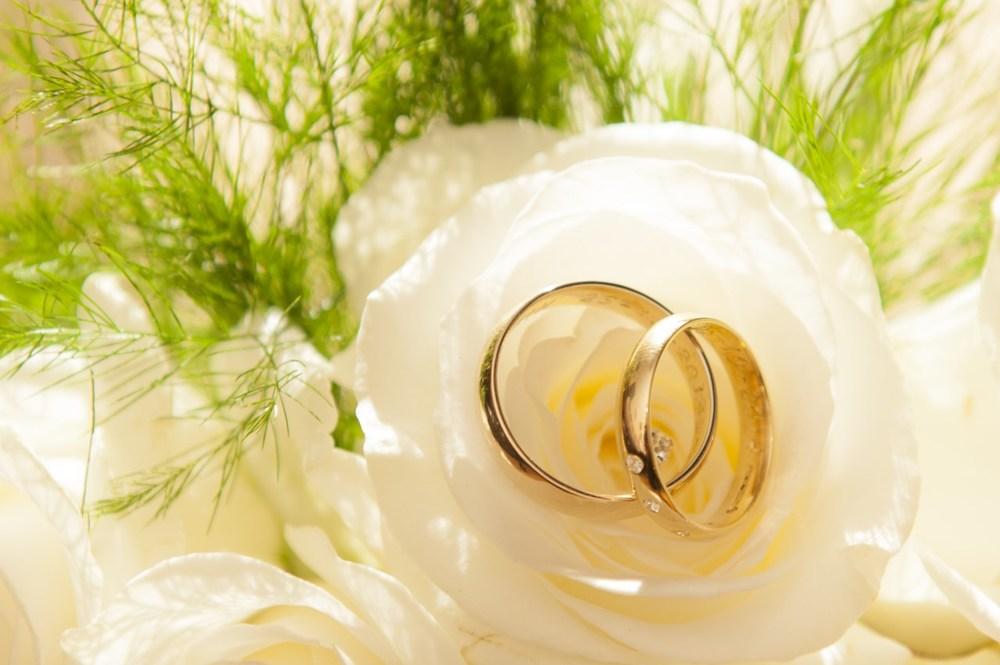 reduced wedding pics for website.jpg