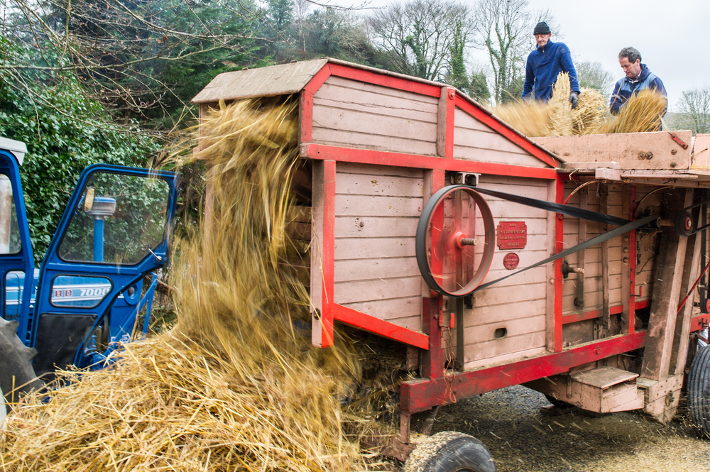 The straw exits the threshing machine at speed. Nikon D3s, 24-70 f2.8. 1/20, f10, ISO 400.
