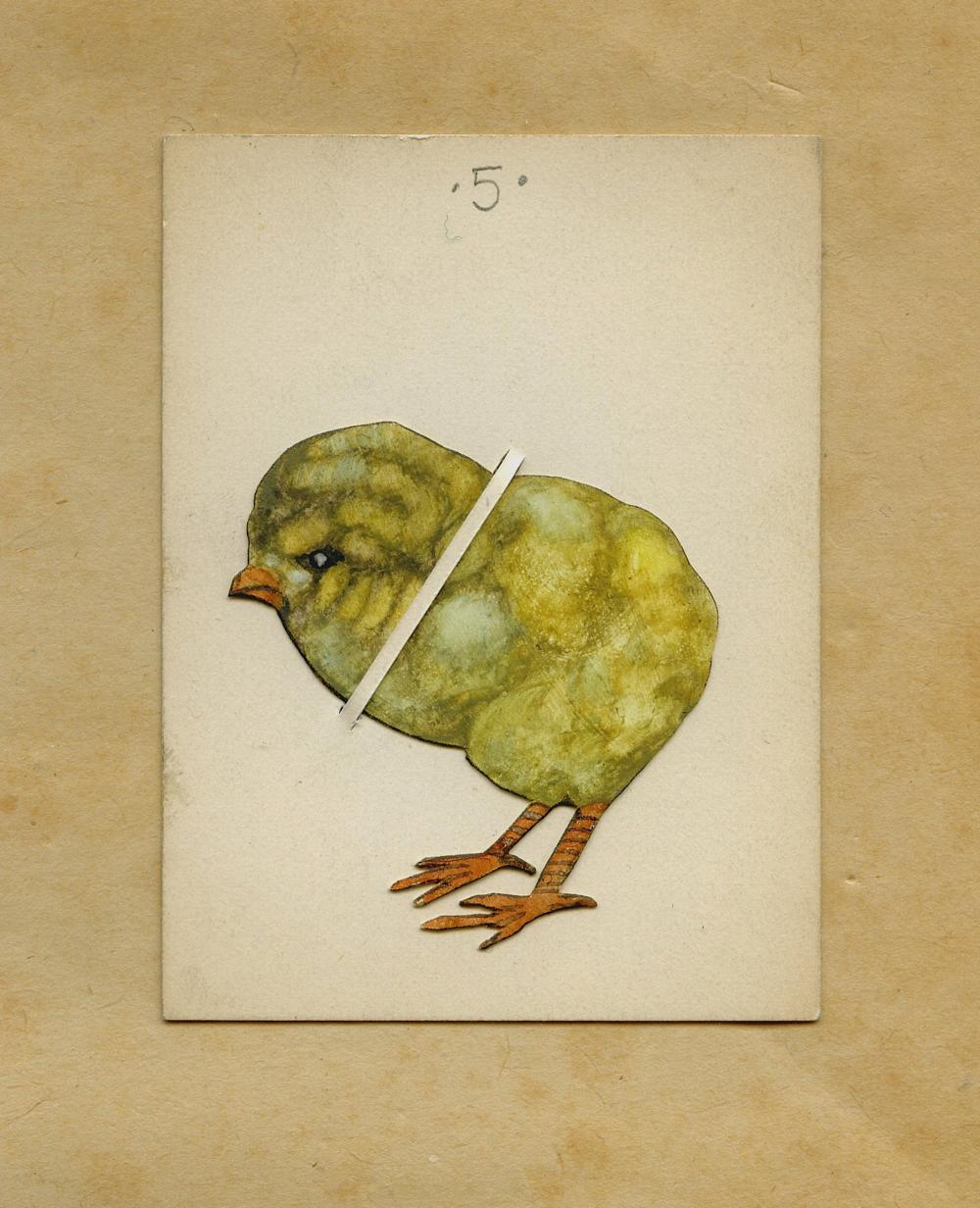 Big Chick