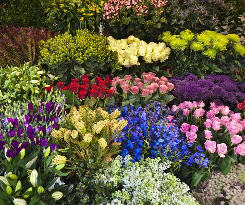 flower-bunch-2-istock.jpg
