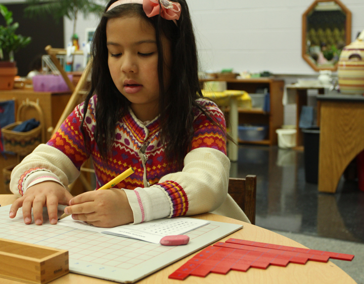Math – Montessori materials illustrate math concepts brilliantly. Each function is expressed with hands-on manipulatives so that children can approach mathematics in a physical sense. As children become more advanced, the materials aide the progression from concrete to abstract.  Here, a student uses numbered wooden strips to perform addition.