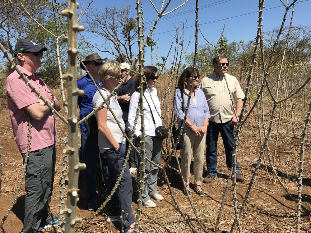 Me and the group in a field of yucca on a recent investment trip to Nicaragua.