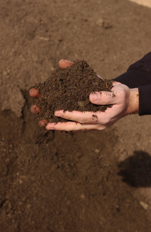 Top Soil & Blends »