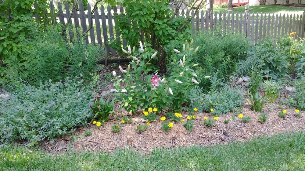 Powell garden.jpg