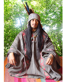 Pic which closely resembles the attire the shamans wore.