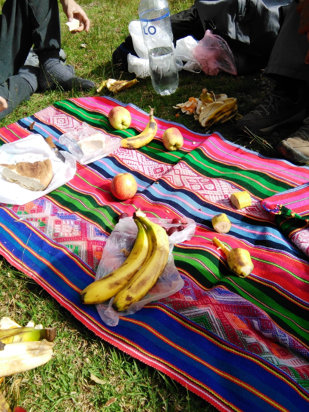 Our fruit picnic the next morning