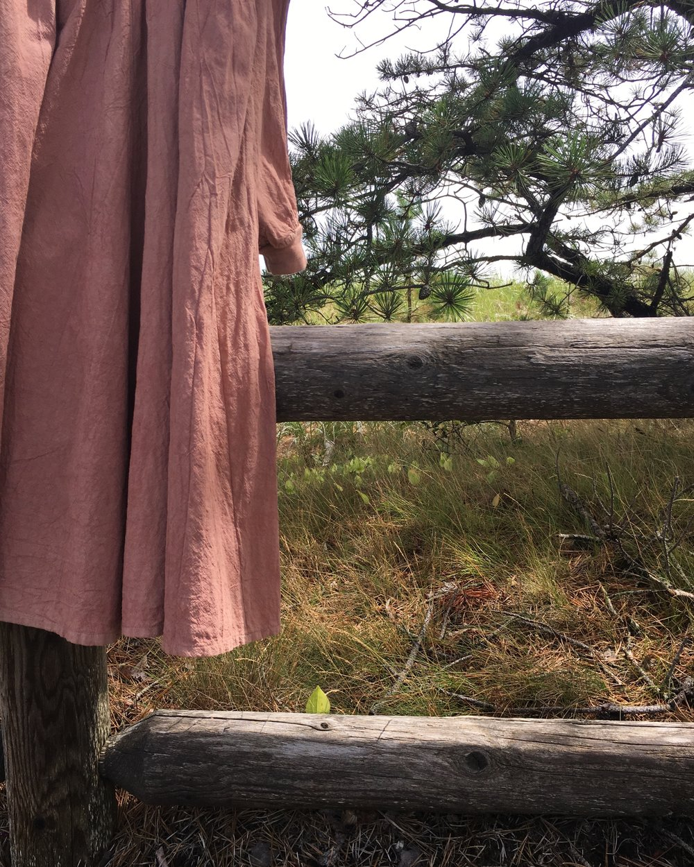 A thrifted dress brought by a student; it began a grey beige and after turns in the avocado and the madder dye baths, became a luminescent cinnamon pink.