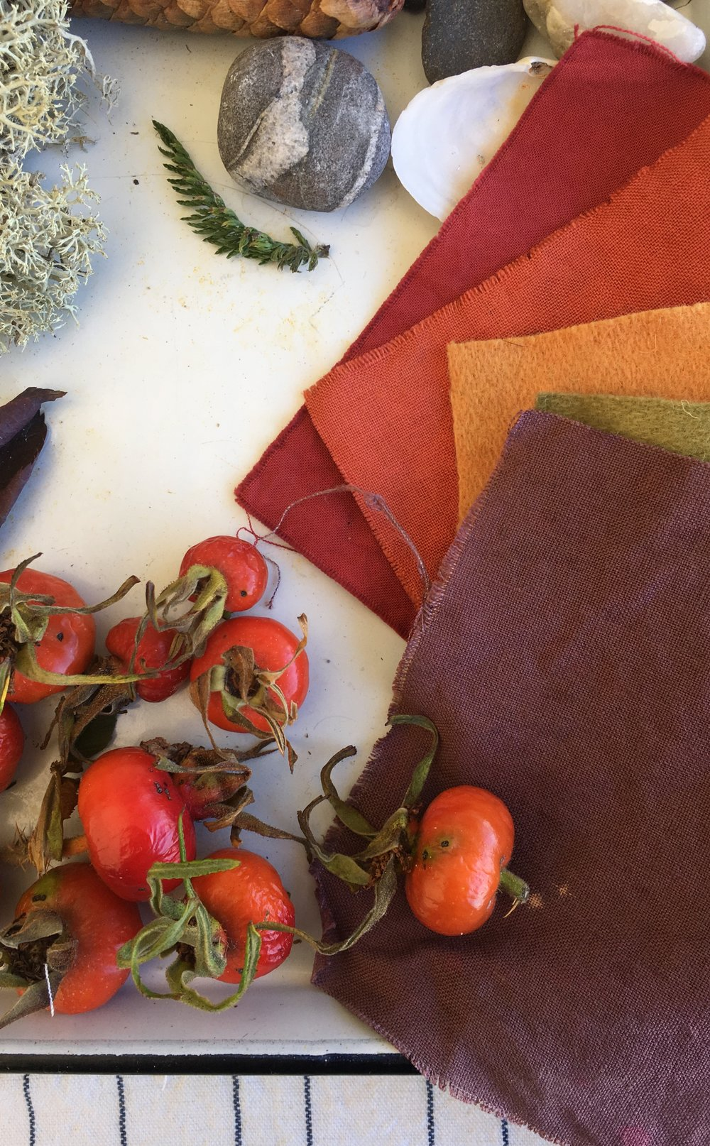 Wild rosehips, swatches in deep, vibrant tones