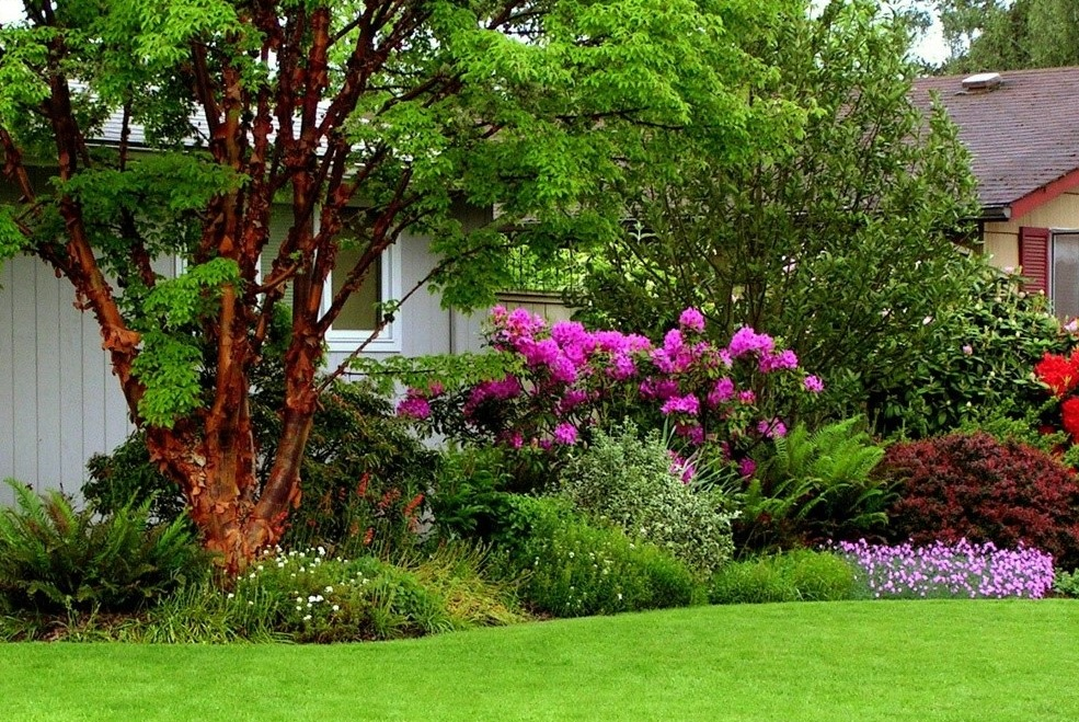 LAWN, TREE & SHRUB SERVICES - Aloha Lawn, Tree & PestServices include: Aeration, Fertilization, Weed Management, Billbugs