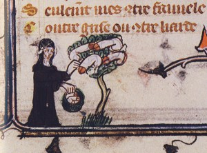 From Paris, Bibliothèque nationale de France, Français 25526. Via Lucy Allen's  blog post .