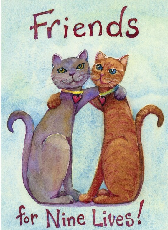 Friends 9 lives.jpg