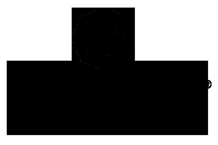 finex-logo-dk.png