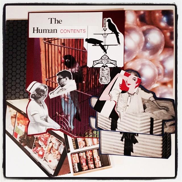 humancontents.jpg