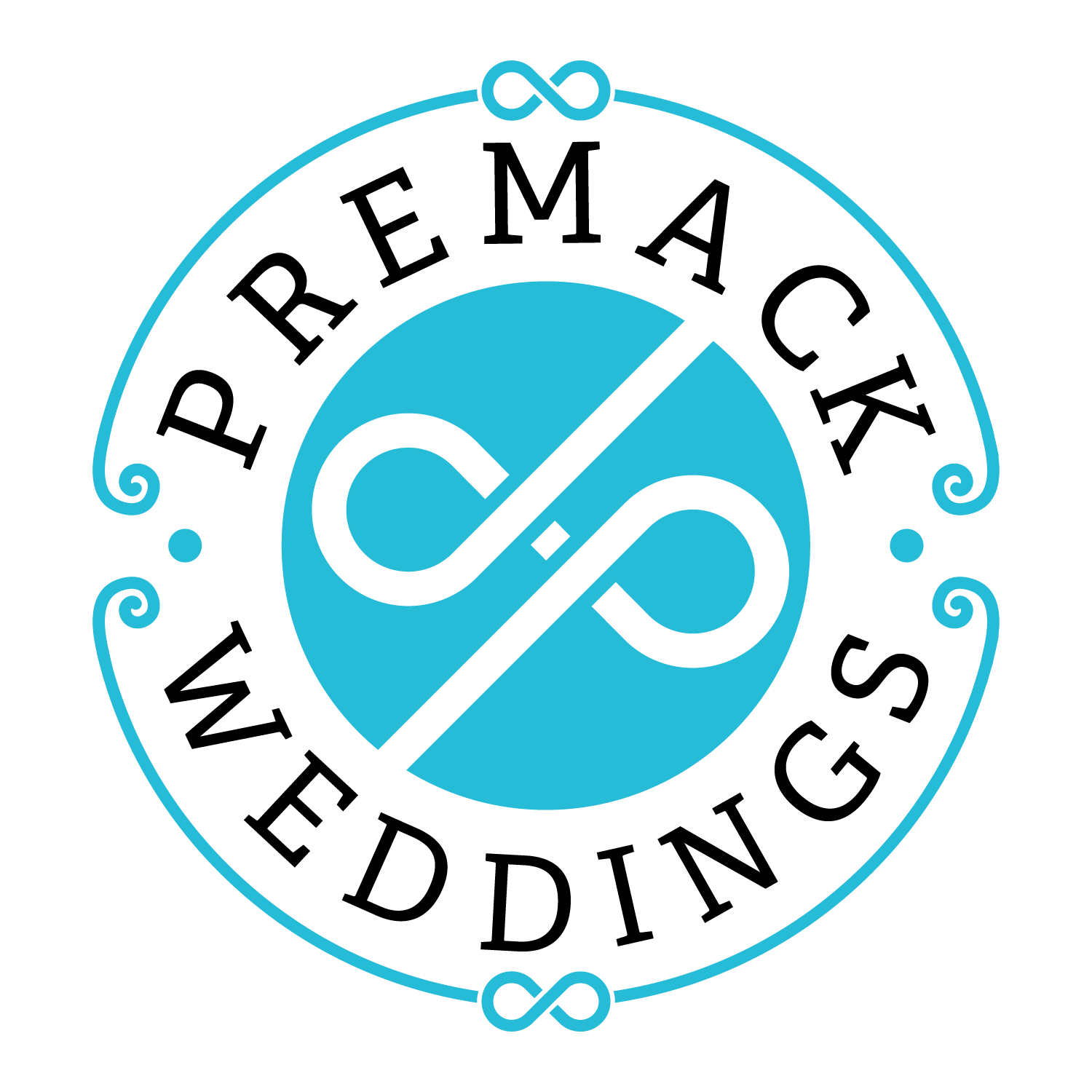 Washington DC Wedding Photographer Jay Premack