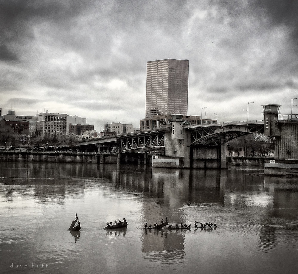 Cormorants-Eye View of the Morrison Bridge and Willamette River, iPhone photo, 2014