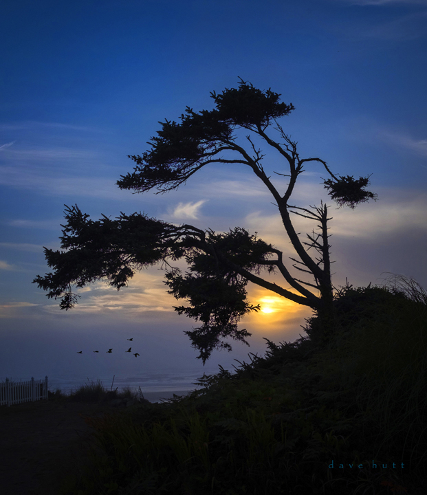 Sunset, Oregon Coast Fuji Xe2 2018