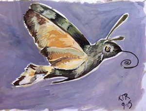 Hummingbird hawk moth sketchbook page - final image.