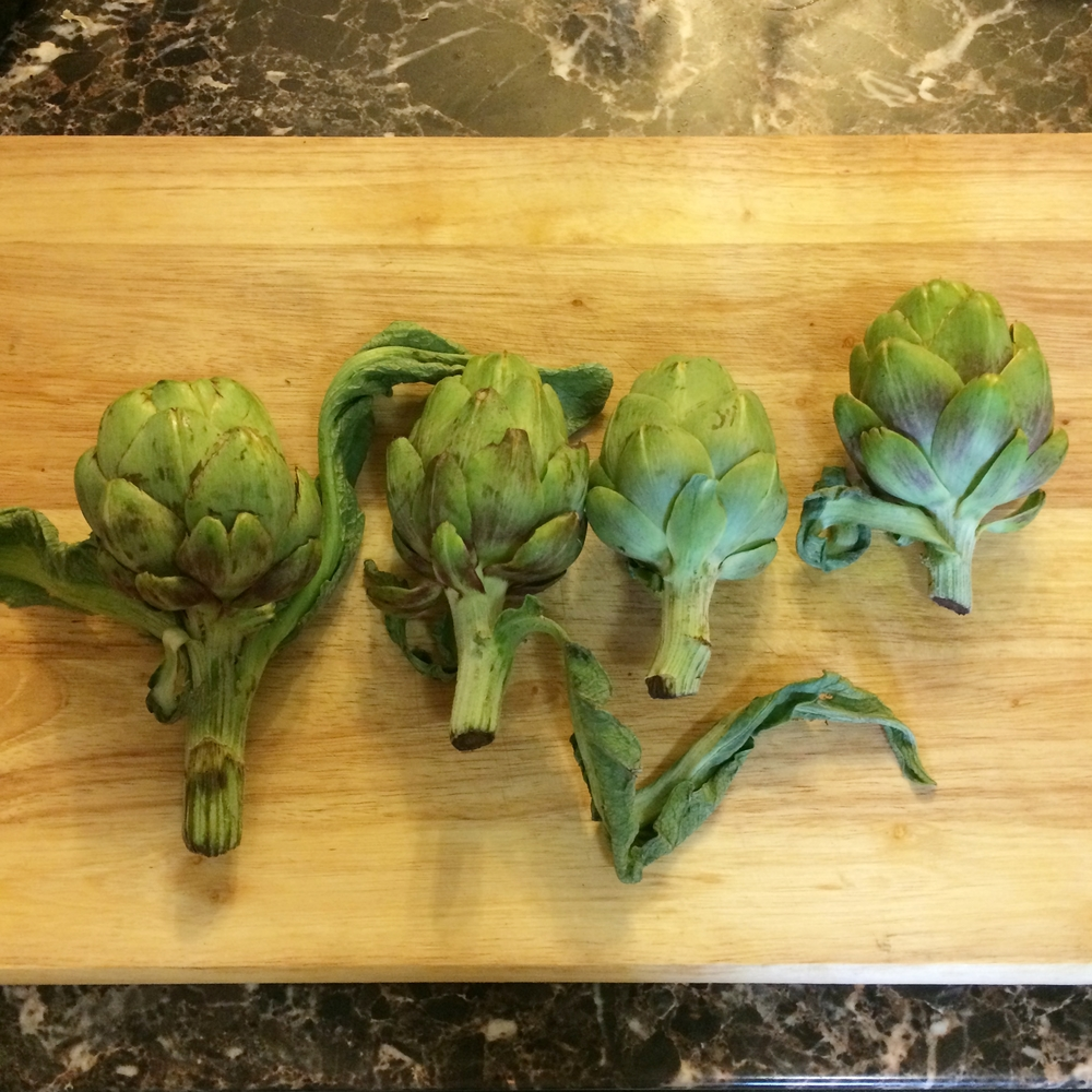Four medium artichokes ready to go.