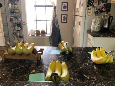 best way to store bananas.png